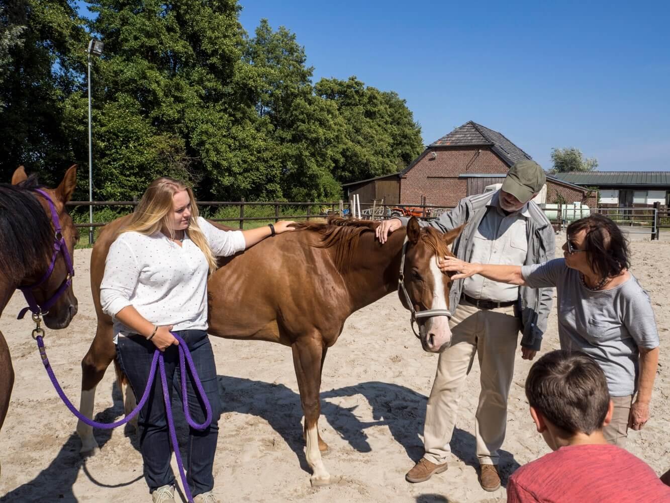 Vorteile des Pferdecoachings