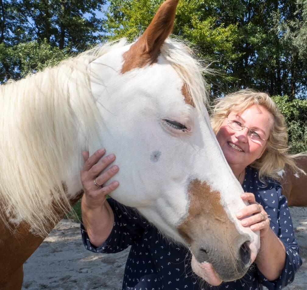 Pferdegestütztes Coaching mit Insa Schülzke