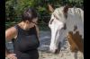 Einzelcoaching - Veränderungen erleben - Co-Trainer Pferd